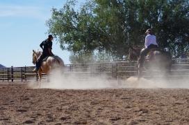 BNC riding 118